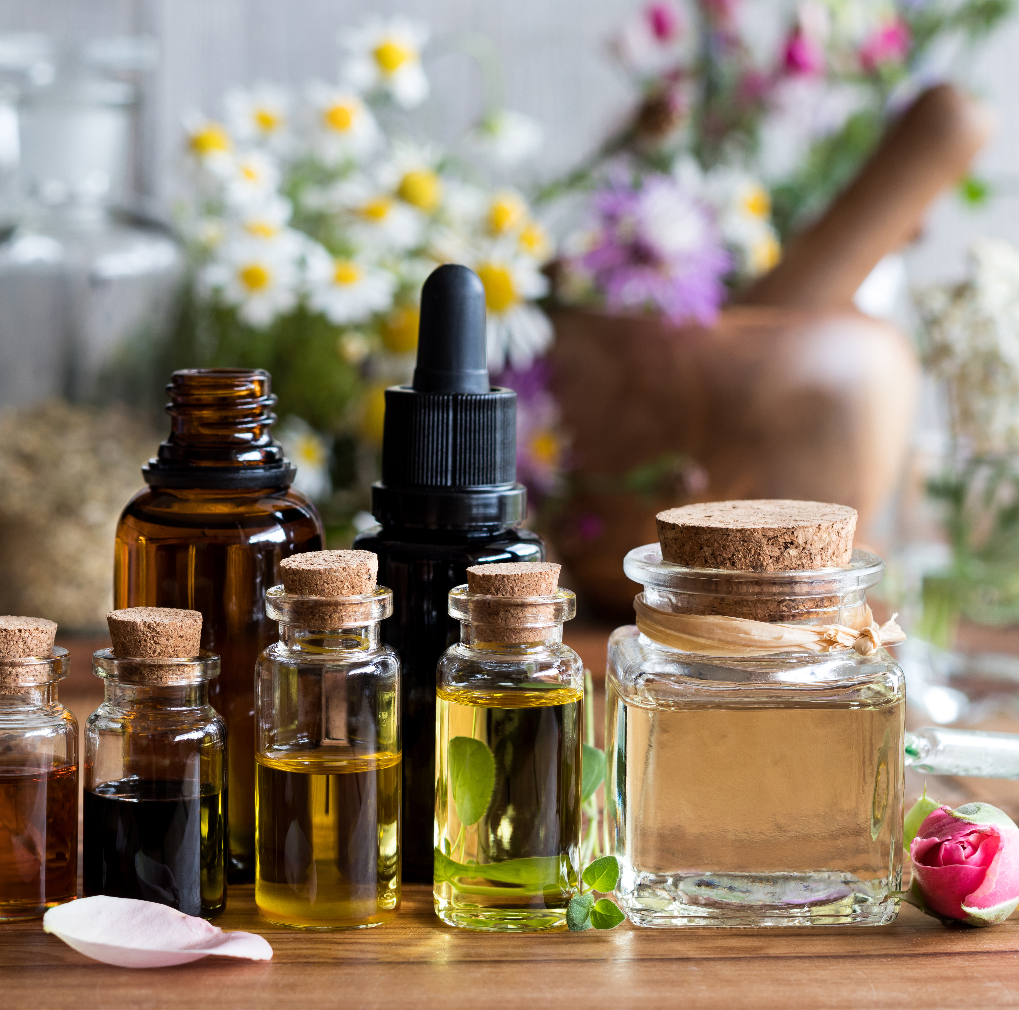 Essential oils used for aromatherapy are bottled plant essences